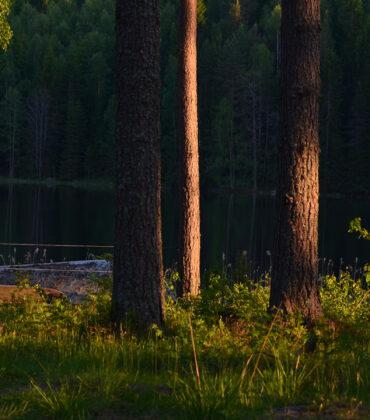 Lillsjön runt, Gräsmark